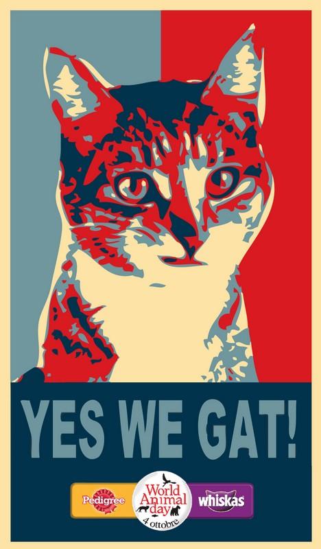 Copywriter_World_Animal_Day_Cat