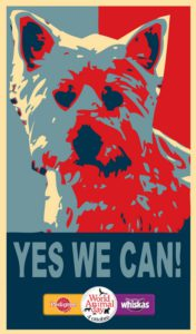 pubblicità yes we can