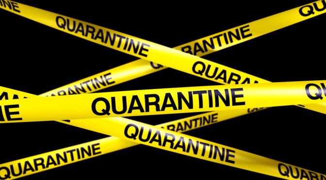 Previsioni coronavirus e profezie quarantena